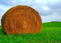 Се продава ливадско сено во бали