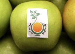 Македонските органски производи се квалитетни, но се произведуваат мали количини