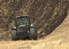Земјоделците ги добиваат субвенциите