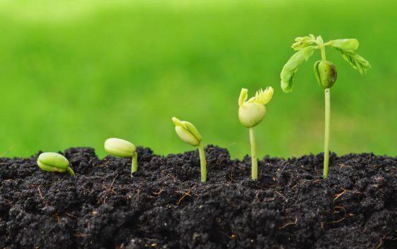 Нов гарантен фонд за земјоделците