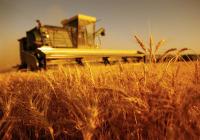 Измените на Законот за земјоделство и рурален развој влегуваат во владина процедура