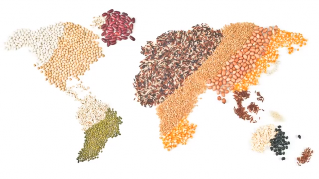 a-world-of-legumes