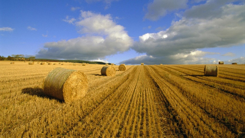 hay_bales_agriculture_summer_4890_1920x1080