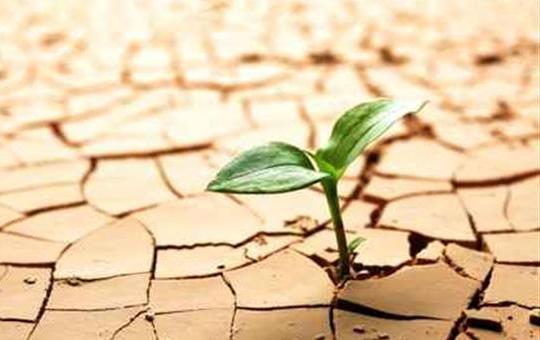 klimatski-promeni-hrana
