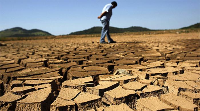 klimatskite promeni vlijaat na agrarot prvi na udar grozjeto pchenicata i domatite