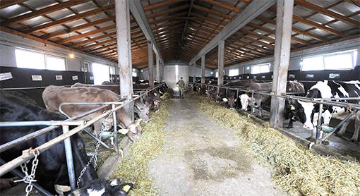 kategorizacija na farmite za pobezbedno mleko