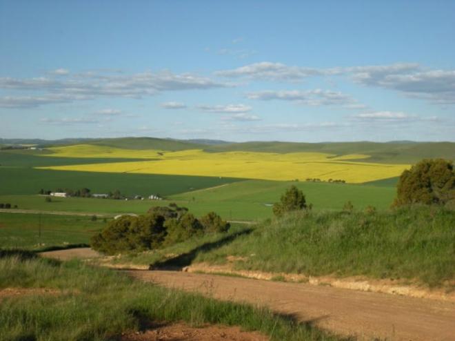 zakup na drzhavno zemjodelsko zemjishte do tri hektari
