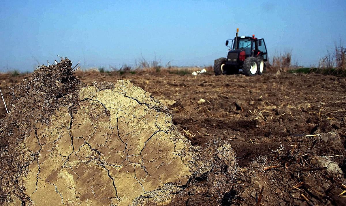 rastitelnoto proizvodstvo belezhi rast od 1,8 procenti