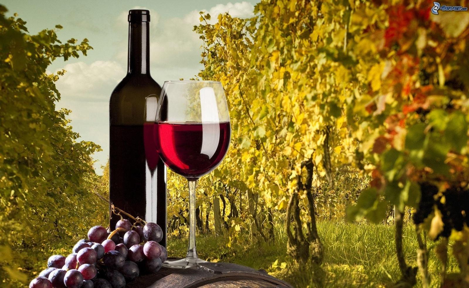 dve vinarski vizbi ne go platile lanskoto grozje izbrishani se od registarot