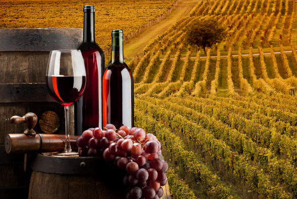 lozarite baraat garancii deka vinariite kje im go isplatat rodot