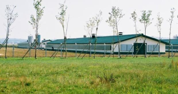 besplatni tehnichki proekti za izgradba i rekonstrukcija na farmi