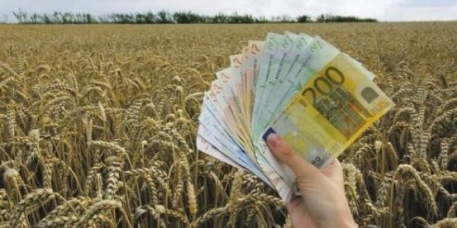 golem interesot za subvencii kaj veleshkite zemjodelci