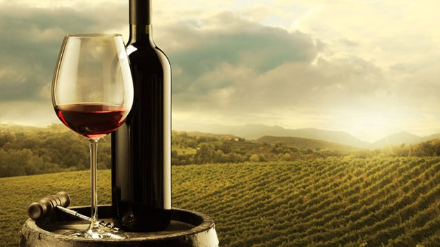 fondacija tikveshki vinski pat edna decenija pochit kon vinoto i razvivanje na vinskata kultura