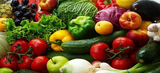 organskoto zemjodelsko proizvodstvo prioritet na semejnite farmi