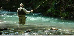 ribolov